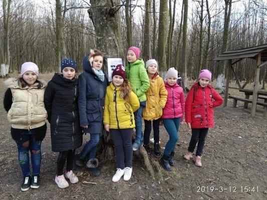 http://dunrada.gov.ua/uploadfile/archive_news/2019/03/13/2019-03-13_5703/images/images-24980.jpg