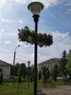 http://dunrada.gov.ua/uploadfile/archive_news/2019/05/15/2019-05-15_1632/images/images-32455.jpg