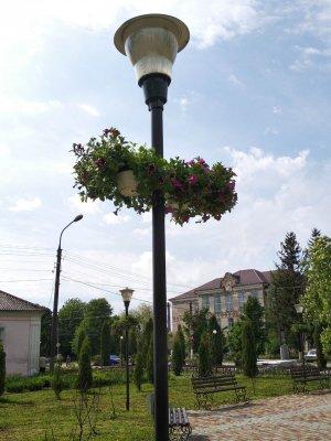 http://dunrada.gov.ua/uploadfile/archive_news/2019/05/15/2019-05-15_1632/images/images-81105.jpg