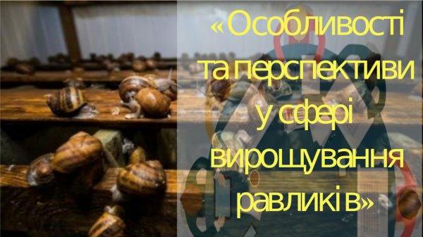 http://dunrada.gov.ua/uploadfile/archive_news/2019/07/09/2019-07-09_8244/images/images-70648.jpg