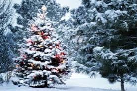 http://dunrada.gov.ua/uploadfile/archive_news/2019/12/12/2019-12-12_1833/images/images-51813.jpg