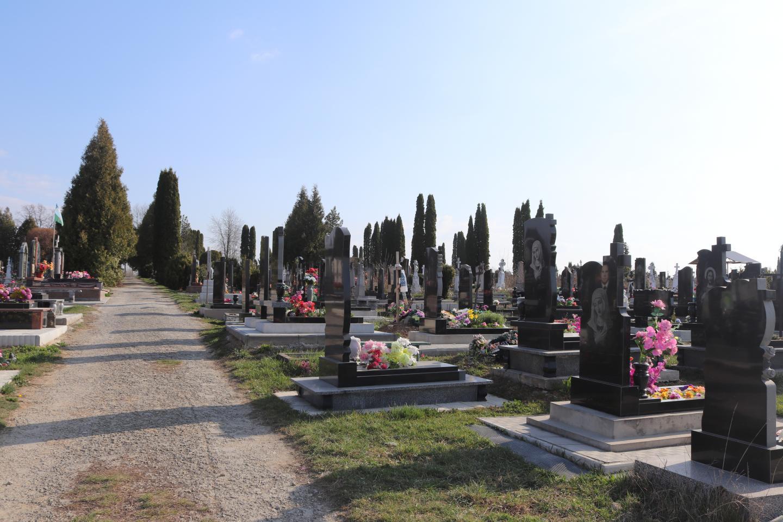 http://dunrada.gov.ua/uploadfile/archive_news/2020/04/10/2020-04-10_9320/images/images-5860.jpg