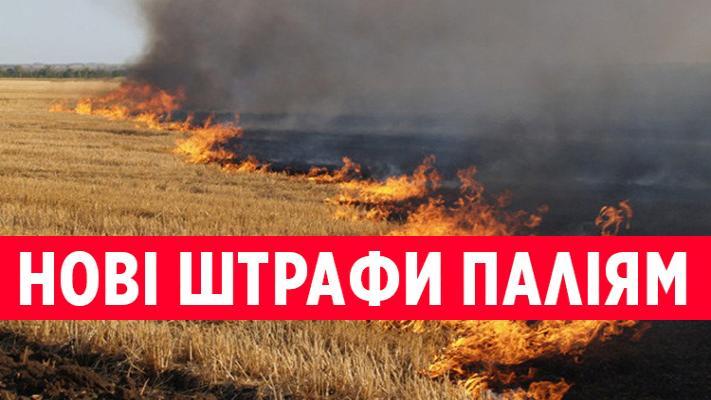 http://dunrada.gov.ua/uploadfile/archive_news/2021/07/19/2021-07-19_7120/images/images-37611.jpg